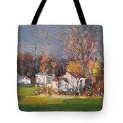 Sunset Light  Tote Bag
