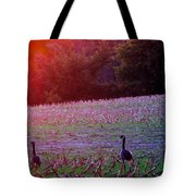 Sunset On Mallards Tote Bag