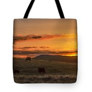 Sunset On Open Range Tote Bag
