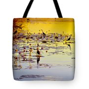 Sunset On Parry's Lagoon Tote Bag