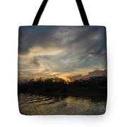 Sunset On The Amazon 1 Tote Bag