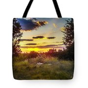 Sunset Over Field Of  Flowers Tote Bag