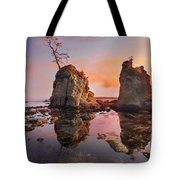 Sunset Over Pig And Sow Inlet At Oregon Coast Tote Bag