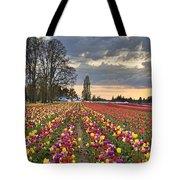 Sunset Over Tulip Flower Farm In Springtime Tote Bag