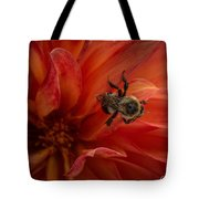 Sunset Red Dahlia Tote Bag