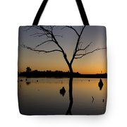 Sunset Riverlands West Alton Mo Portrait Dsc06670 Tote Bag