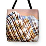 Sunset Seashell Tote Bag