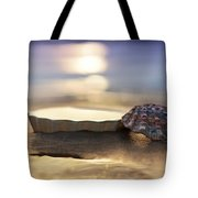 Sunset Shells Tote Bag