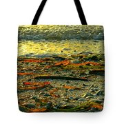 Sunset Shore Tote Bag
