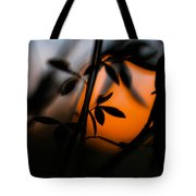 Sunset Silhouette 2 Tote Bag