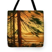 Sunset Splendor Tote Bag