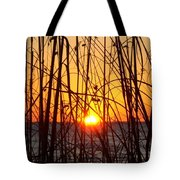 Sunset Through Grasses Tote Bag