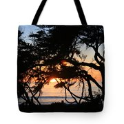 Sunset Through The Cypress Trees Cambria Tote Bag