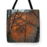 Sunset Through The Forest Tote Bag