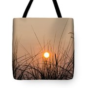 Sunset Through The Grass - Villas New Jersey Tote Bag by Bill Cannon