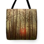 Sunset Thru The Pine Barrens Tote Bag