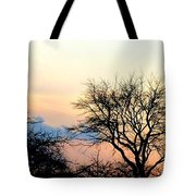 Sunset Tree Silhouettes Tote Bag
