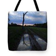 Sunset Treeflection Tote Bag