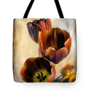 Sunset Tulips Tote Bag