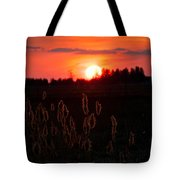 Sunset Wheat Field Tote Bag