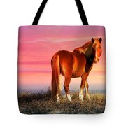 Sunset Wild Tote Bag