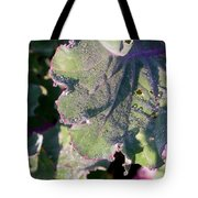 Sunshine And Dew Tote Bag