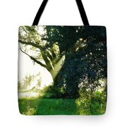 Sunshine And Sunbeams Tote Bag