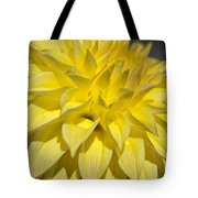 Sunshine Dahlia Tote Bag