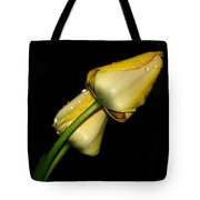 Sunshine In Your Smile Tote Bag