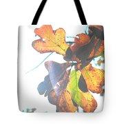 Sunshine Leaves Tote Bag