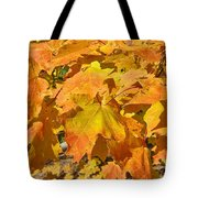 Sunshine Of Fall Tote Bag