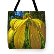 Sunshine On My Shoulders Tote Bag