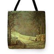 Sunshine Through Winter Trees Tote Bag