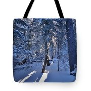 Sunshine Through Winter Trees Tote Bag