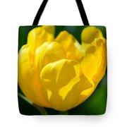 Sunshine Tulip Tote Bag