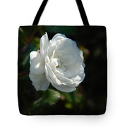 Sunshine White Rose Tote Bag