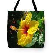 Sunshine Yellow Hibiscus With Red Throat Tote Bag