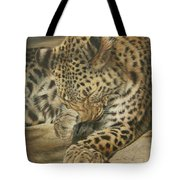 Sunspots Tote Bag