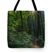 Sunstar Along The Trail Tote Bag