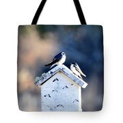 Sunworship Tote Bag