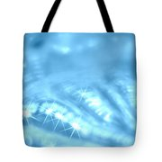 Surafce Of A Shell Tote Bag