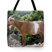 Sure Footed Tote Bag