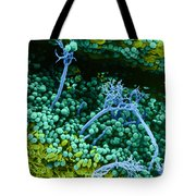 Surface Of Leaf With Fungal Infections Tote Bag
