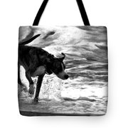 Surfer Bird Tote Bag