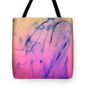 here comes a surprise to you, and I can see that you are surprised  Tote Bag