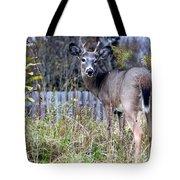 Surprised Deer Tote Bag