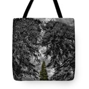 Surrounded Green Tree Tote Bag