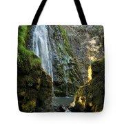 Susan Creek Falls Series 3 Tote Bag