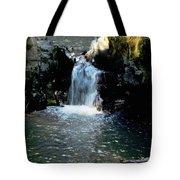 Susan Creek Falls Series 4 Tote Bag
