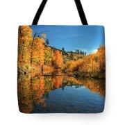 Susan River 11-3-12 Tote Bag